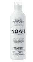 Noah 2.1 Nourishing Conditioner With Mango And Ric