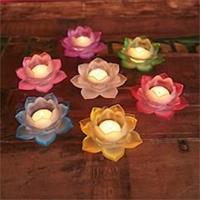 Ljushållare i glas. Lotus rosa 5,5x12cm