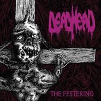 DEAD HEAD-Festering