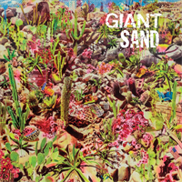 Giant Sand-Return To The Valley Of Rain(LTD)