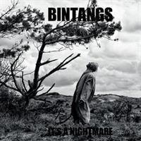 BINTANGS-It's a Nightmare(LTD)