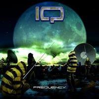 IQ-Frequency(LTD)