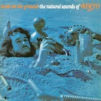 AIRTO-Seeds On the Ground - the Natural Sounds of
