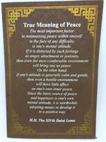 True meaning of Peace, Dalai Lama