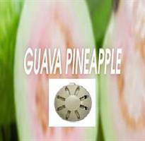 Fan-Y refill Guava/Ananas