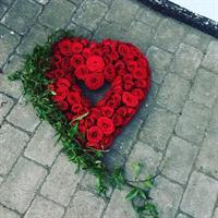 Hjärta Alex