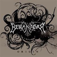 BORKNAGAR-Origin(LTD)