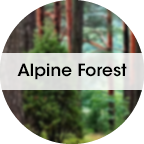 My Fresh refill, Alpine Forrest