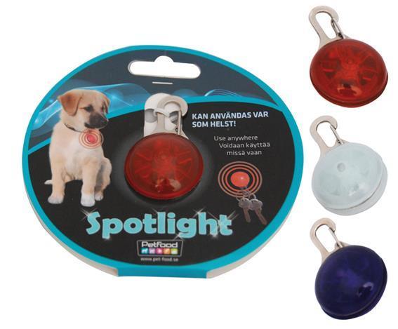 Spotlight Lila