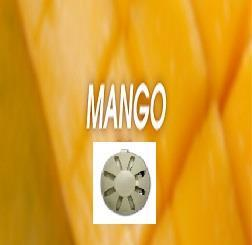 Fan-Y refill Mango