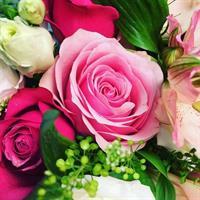 Blomsterprenumeration 450kr var tredje vecka
