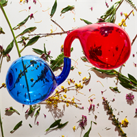 Dirty Projectors-Lamp Lit Prose-LTD