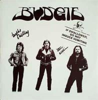 BUDGIE-If Swallowed Do Not Induce Vomiting