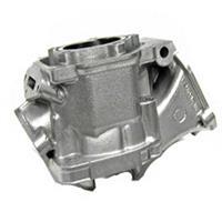 Sylinder Rotax Max Evo