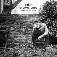 Odin Staveland-Mellom Husene
