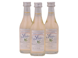 Hallands Fläder 12x5 cl 38%