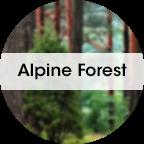 My Fresh refiller 6st. + 1st. Fläkt Alpine Forrest