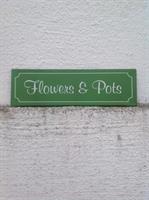 Flowers & Pots