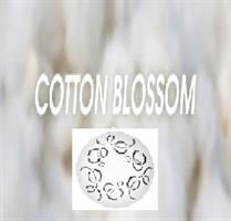 Fan-Y refill Cottom Blossom