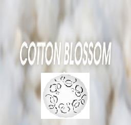 Fan-Y refill Cottom Blossom