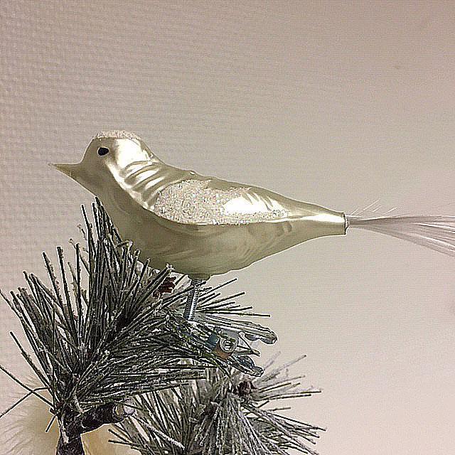 Fugl, matt hvit