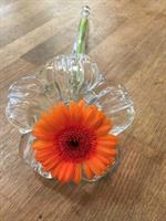 Låg liggande vas i glas i form av en blomma.