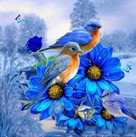 Diamond Painting, Fugler blå 50*50cm (LIE6821) FPR