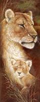 Diamond Painting, Løve m/barn 20*50cm (A063) FPR