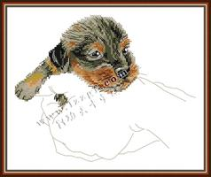 Broderi korssting, Hund i hånd 33*26cm (DA525)