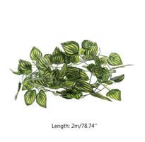 Terrarie Plante (Plast)
