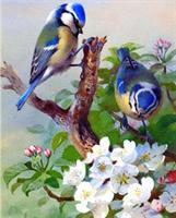 Diamond Painting, Fugler blå 20*30cm (F20035) FPK
