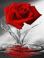 Diamond Painting, Stående rød rose 40*50cm FPK
