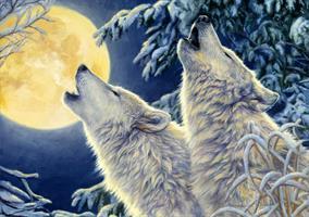Puslespill Moonlight 1000 brikker
