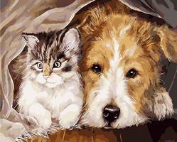 Diamond Painting, Hund og Katt 40*50cm (K647) FPK