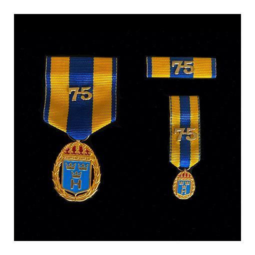 Medaljset (HvTjgGM75), stort