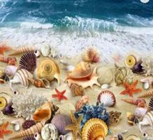 Diamond Painting,  Skjell i strandkanten 50*40cm (DP1147) FPK