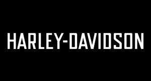 Her finner du ting og tang vi har på lager til Harley Davidson