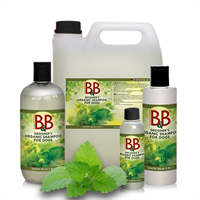 B&B 2 i 1 Shampoo med sitronmelisse 100ml