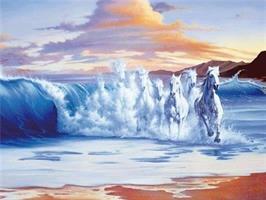 Diamond Painting, Hester i havet 70*50cm FPR