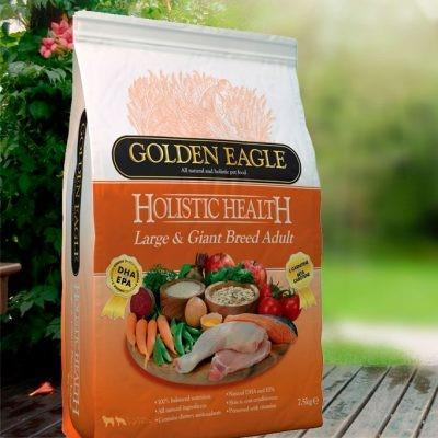 GE Holistic Health L&G Adult 12kg