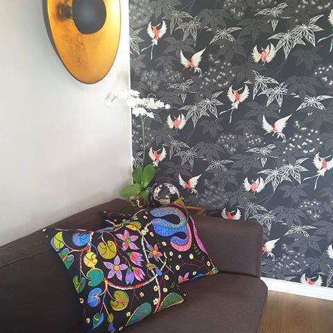 Kuddfodral svart Teheran 40x40 enkelsidig