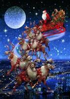 Puslespill Santas Flying Sleigh 1000 brikker P