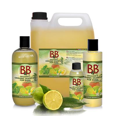 B&B shampoo med sitrus 100ml