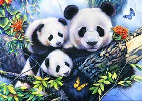 Puslespill Panda Family 1000 brikker