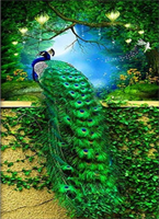 Diamond Painting, Påfugl grønn 40*50cm  FPR