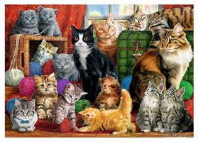 Puslespill Katter 1000 brikker