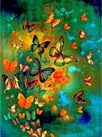 Diamond Painting, Fargerik sommerfugl 40*50cm FPK