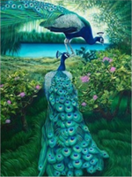 Diamond Painting, Påfugl natur 40*50cm FPR