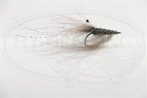 Ghost shrimp #4