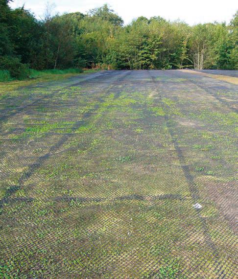 Geonät gräsareal
